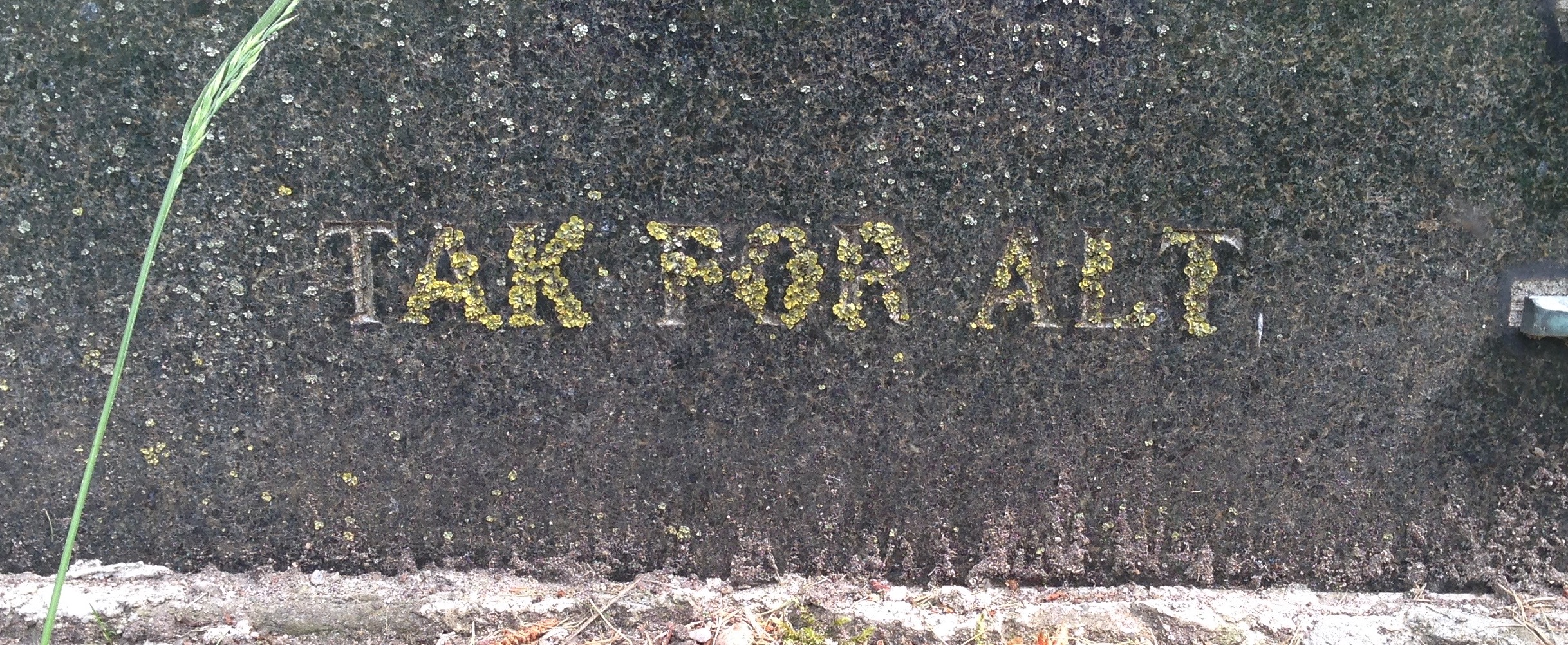 Close-up photo of an inscription on a gravestone reading 'TAK FOR ALT'.