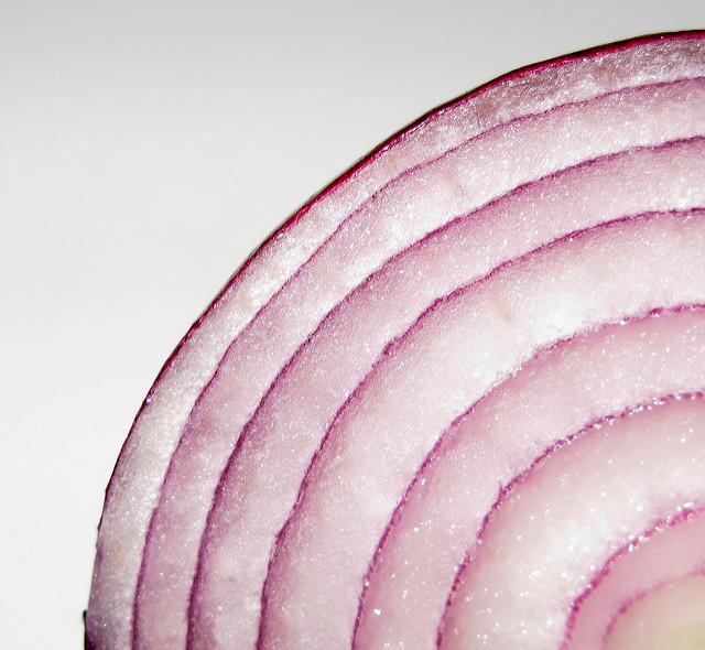 Close-up photograph of an onion slice.